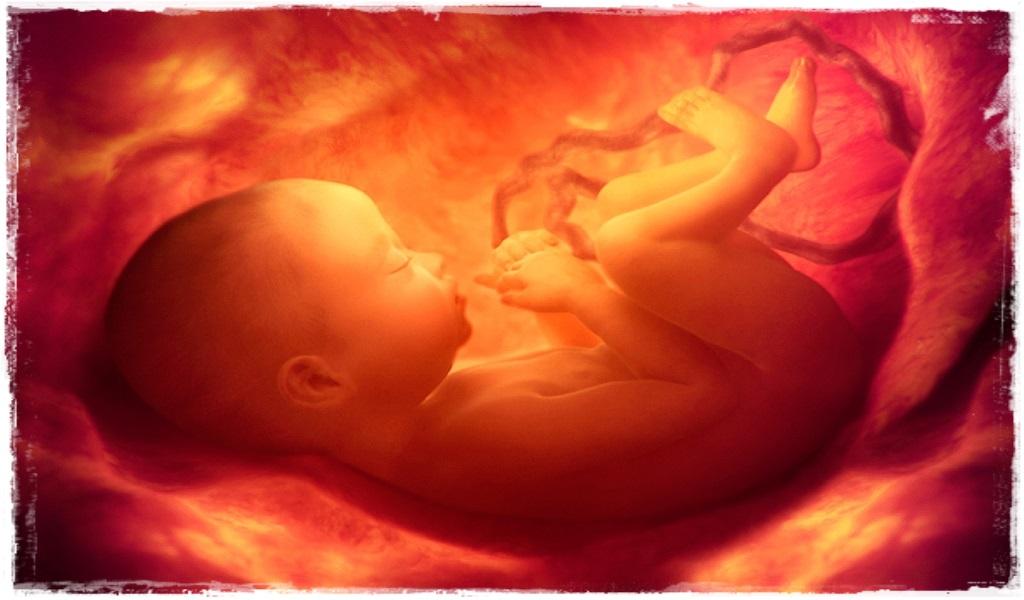 anne karnında ölen bebek
